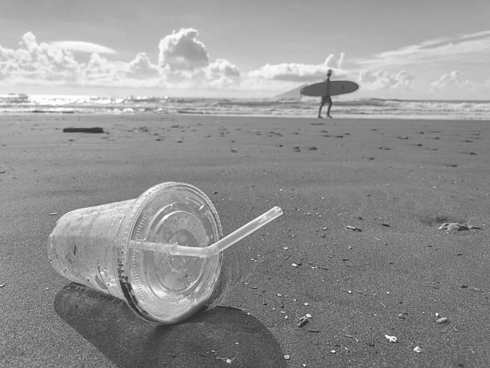 Ny proces gør bio-nedbrydeligt plastik reelt nedbrydeligt - teknologikritik